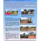 Weeds and soil pests in Kenyan vegetables poster