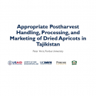"""Appropriate Postharvest Handling, Processing, and marketing of Dried Apricots in Tajikistan"" title slide"