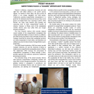 "Horticulture CRSP Newsletter Project Highlight: Sweet potato flour: a ""golden"" opportunity for Ghana"
