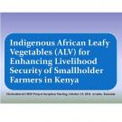 Indigenous African leafy vegetables for enhancing livelihood security of smallholder farmers in Kenya - title slide