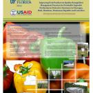 Improving fruit postharvest quality through best management practices for vegetable production in Central America poster