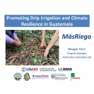 """Promoting Drip Irrigation and Climate Resilience in Guatemala"" photo of drip irrigation on a mulched bed, title slide"
