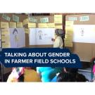 """Talking about gender in farmer field schools"" text on a photo of a woman looking at a board with cards and drawings of women on it"