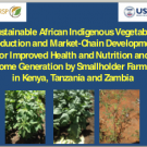 Strengthening the value chain for African indigenous vegetables