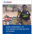 USAID report cover: Rapid Assessment of the Horticulture Sector in Guinea
