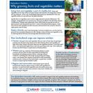 fact sheet - How horticultural crops can improve nutrition
