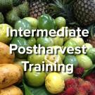 Intermediate Postharvest Training - words on background image of fresh fruits and vegetables at market