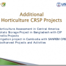 Other Horticulture CRSP projects