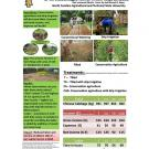Poster: Drip irrigation technologies in Central America and Cambodia