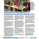 success story fact sheet - Supporting postharvest in Tanzania's horticulture sector