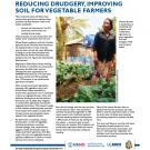 fact sheet- Reducing drudgery, improving soil for vegetable farmers