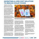 success story fact sheet: Inventing a low-cost solution to reduce moldy foods
