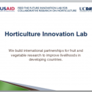 Slides: Horticulture Innovation Lab Overview and Importance of Improving Postharvest Practices
