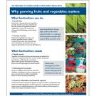 Fact sheet - why horticulture, how growing fruits and vegetable matters for poverty reduction