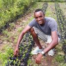 Young entrepreneur with vegetable seedling nursery