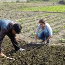 Students measure out a plot in a field