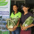 Marketers with baskets of vegetables in Phnom Penh 'safe vegetables' market