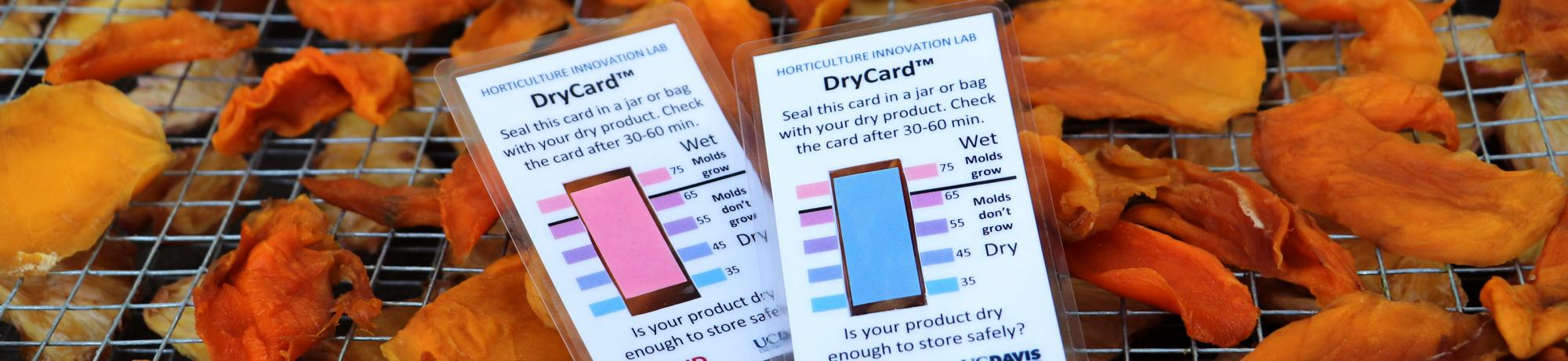 DryCard indicates dryness for safe food storage